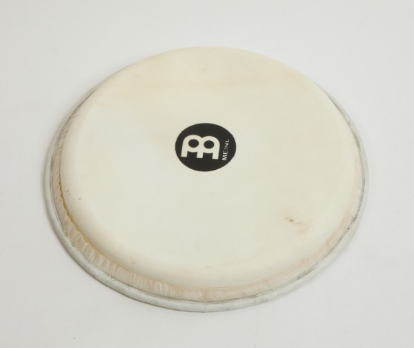 """MEINL Percussion Ziegenfell - 12"""" für Djembe FMDJ-L (HEAD-93)"""