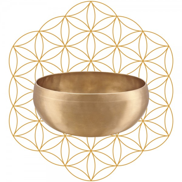 MEINL Sonic Energy Synthesis Series Flower of Life Singing Bowl - 1000g (SB-S-FOL-1000)