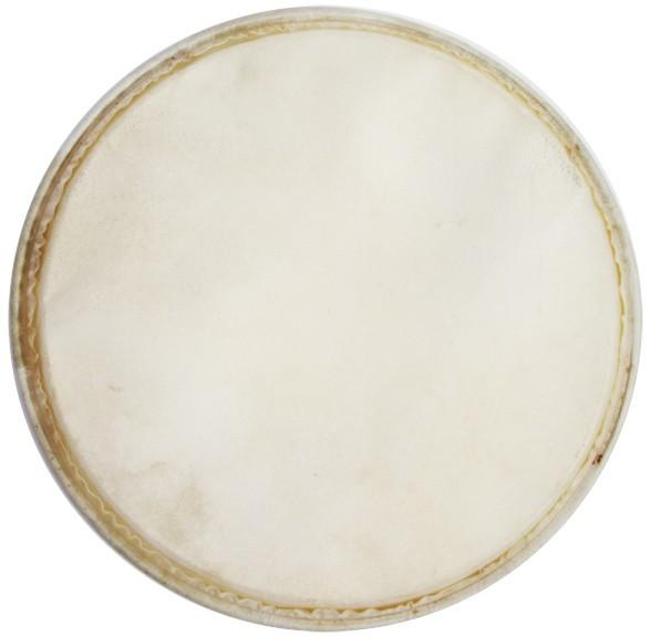"MEINL Percussion Plenera Fell - für 10"" aus Plenera Set (HEAD-76)"
