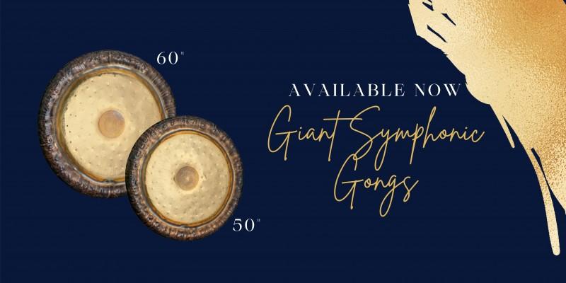 https://www.meinlshop.de/en/meinl-sonic-energy/gongs-tam-tams/giant-symphonic-gongs